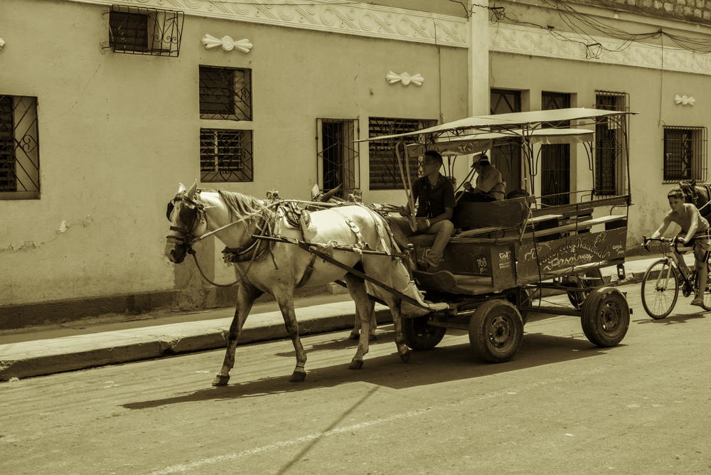 Cuban Horse-Drawn Carriage