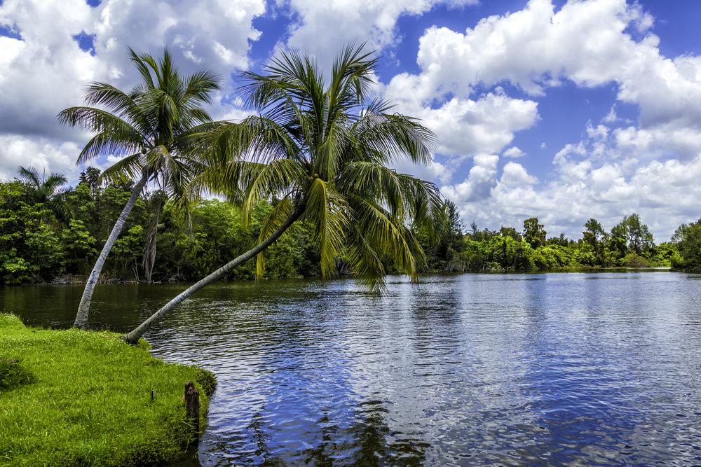 Fidel's Secret Island Getaway