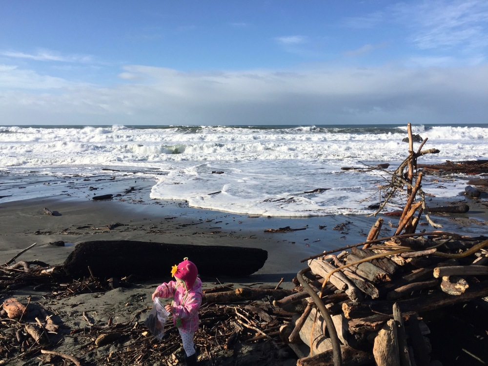 "Amounts of driftwood are endless at ""Walk-on-Beach"" (just 150 yds from Casa Pacis)"