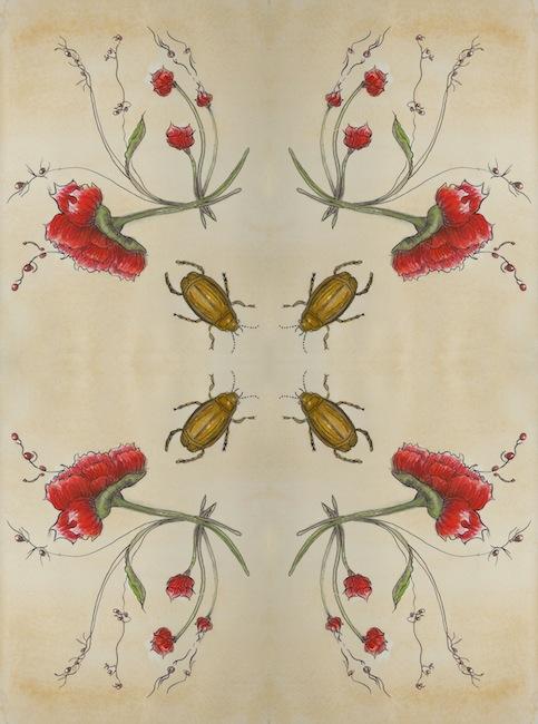Fiorella 2b kopi.jpg