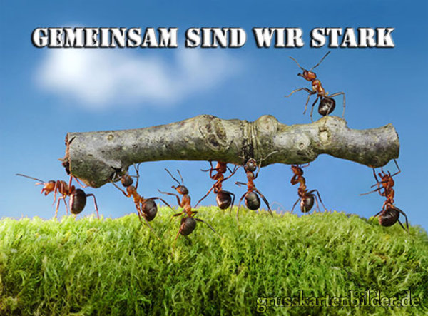 (Foto: www.grusskartenbilder.de)