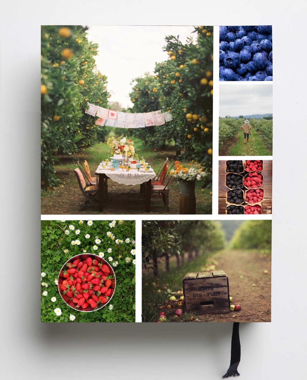 Smash and Bramble Cookbook Backcover