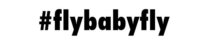 flybabyfly-divider.jpg