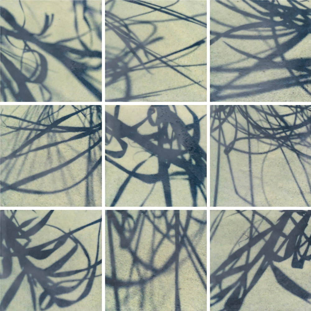 Shadow Calligraphy by Erin Keane : photography with encaustic beeswax : 24 x 24 inches