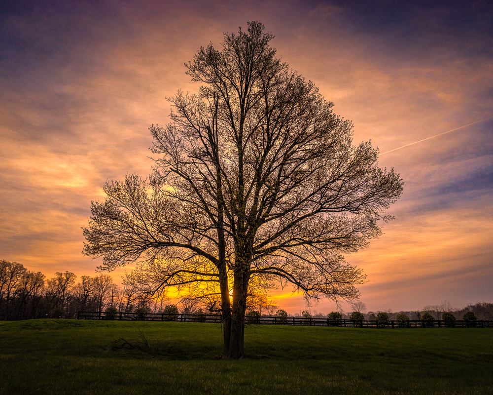 Purcellville_Sunrise.jpg