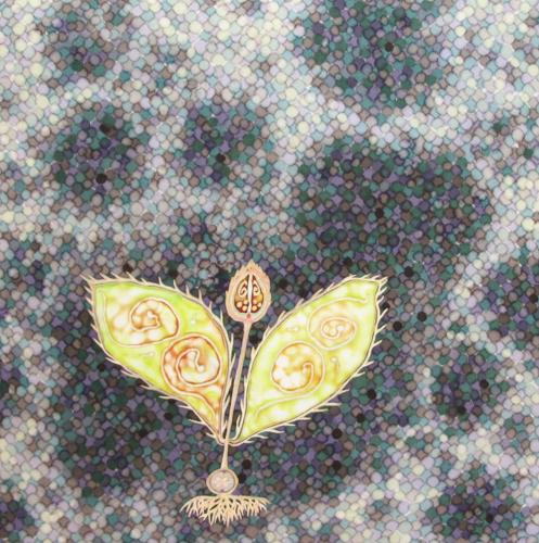 Seeds of Light: A wish