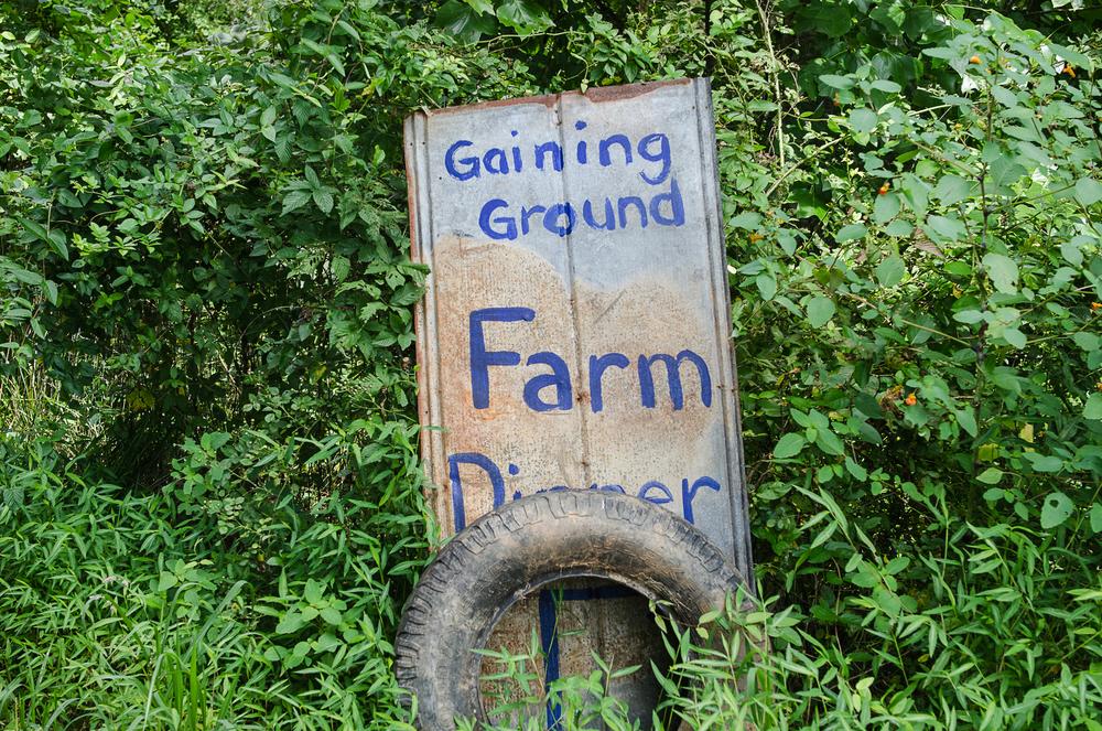 gaining-ground-2431.jpg