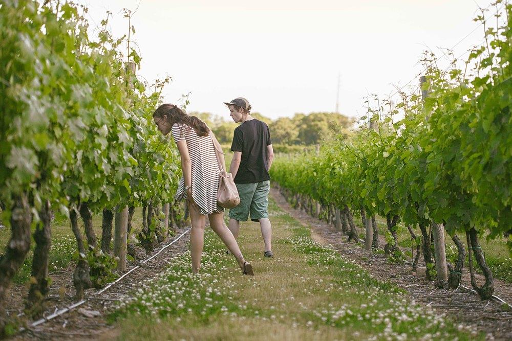 20150623-winetasting2.jpg