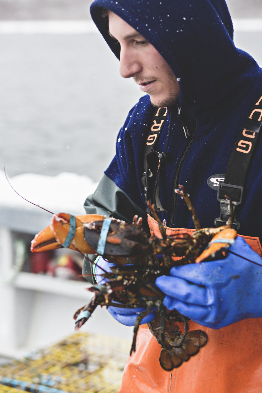 Lobster fishing in a snow storm.