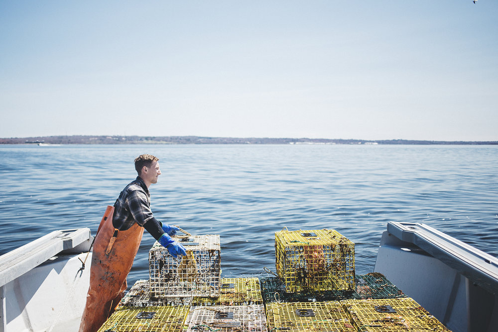 Nick, stacking some lobster traps.