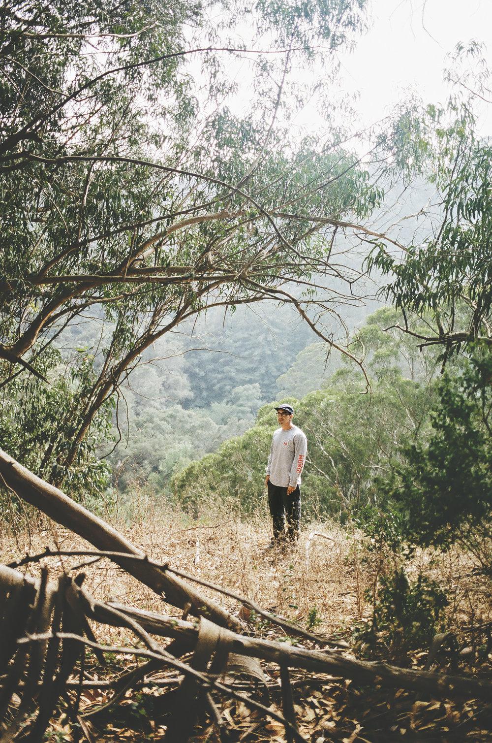 California-22.jpg