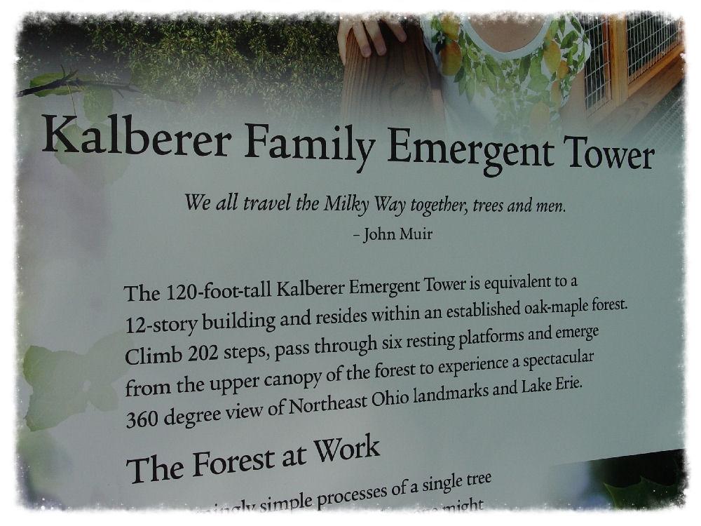 emergentTowerSignage7x15HoldenArb0922r.jpg