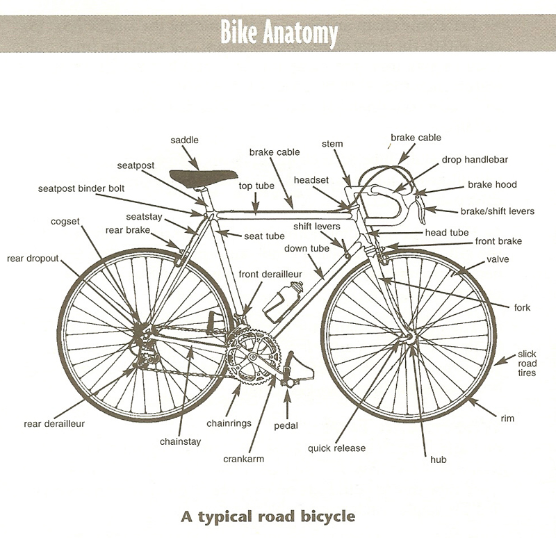 get to know your bike! on the route bicycles, bike shop, bike