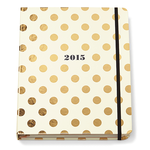 kate-spade-new-york-2014-agenda-large-17-month-gold-dot-the-organizing-store.png