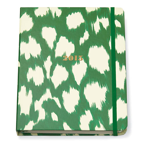 kate-spade-new-york-2014-agenda-large-17-month-green-ikat.png