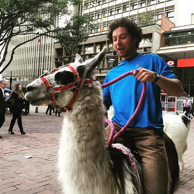 """I'll give you four dollars to ride your llama."""