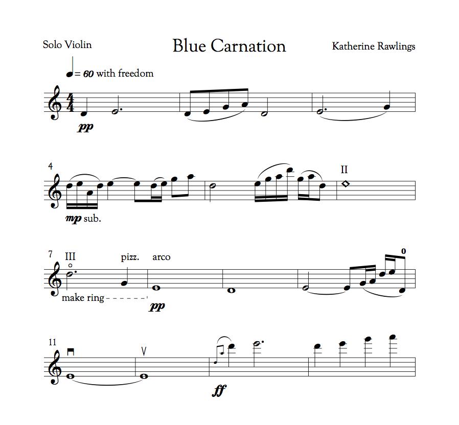 Blue Carnation - solo violin — Katherine Rawlings | Anthea\'s Garden ...