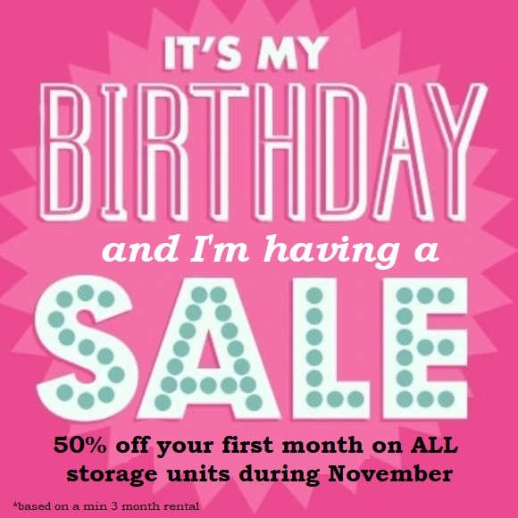 Birthday sale november access sale half price storage.jpg