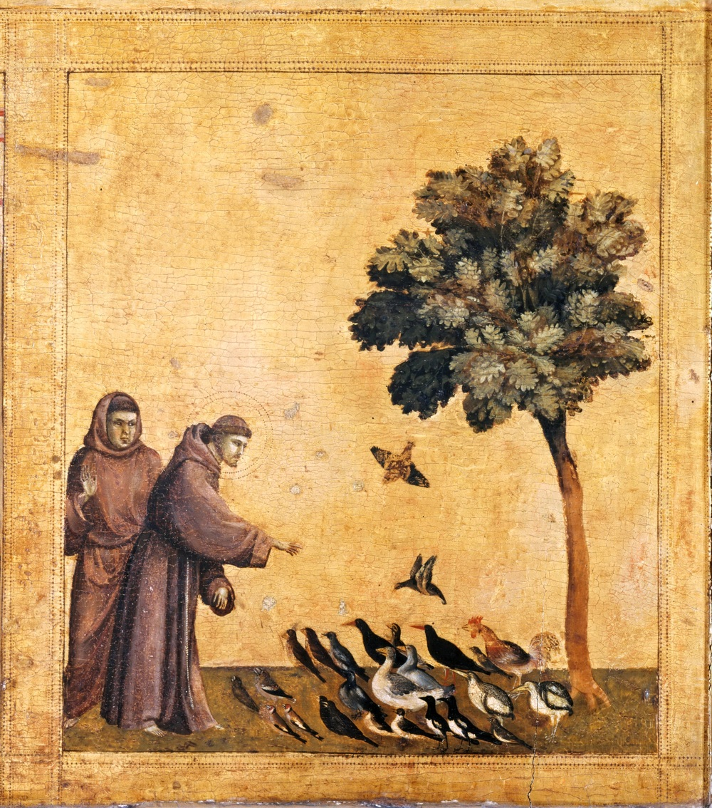 Giotto,  Predella