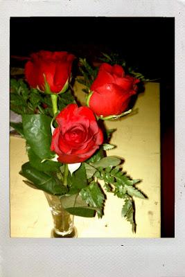roses+pic