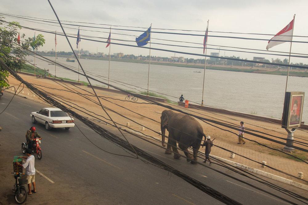 JOL005_Cambodia-3024.jpg
