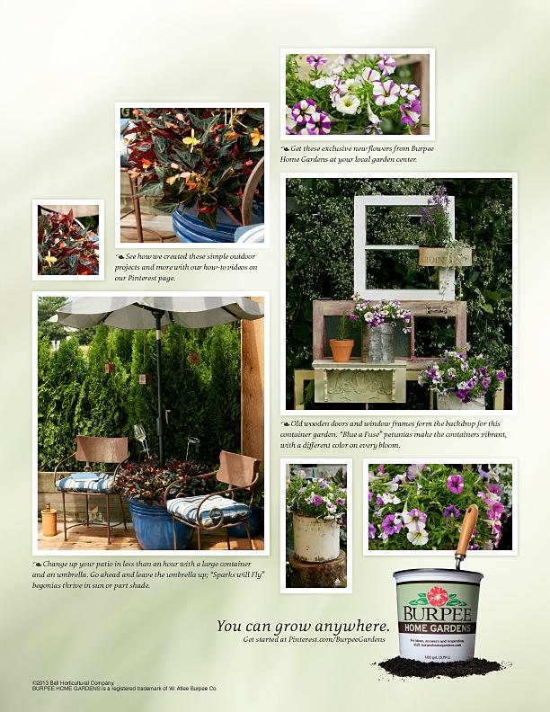 Burpee Pinterest comp.jpg