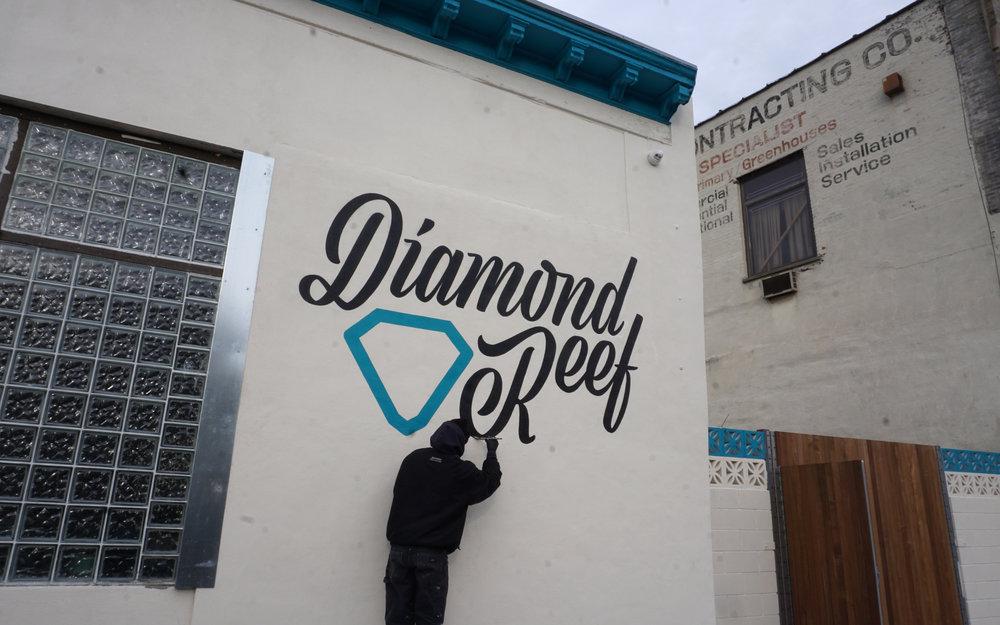 diamondreef_resized_05.jpg