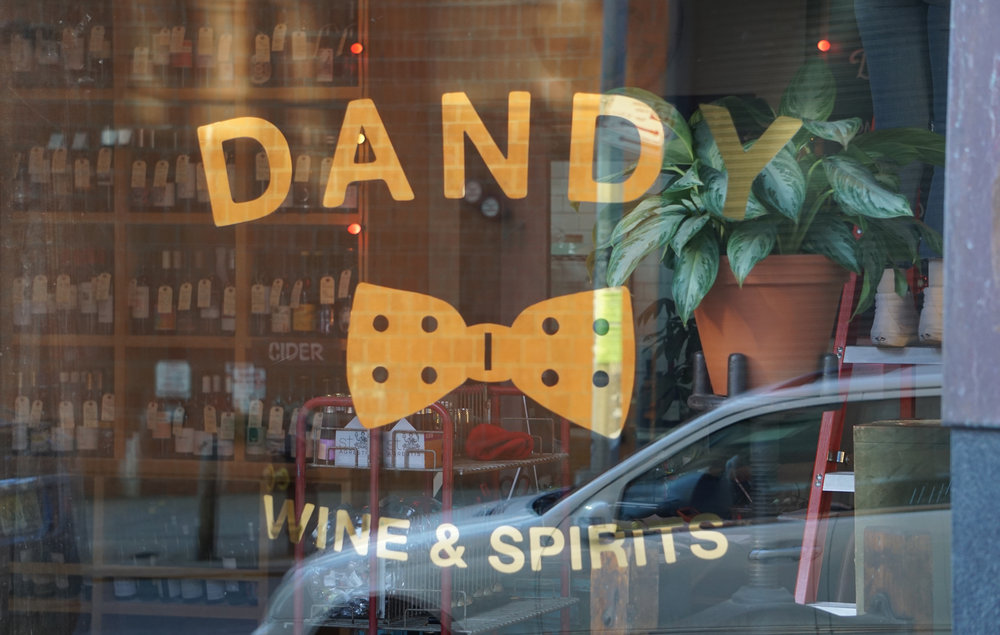 dandy_resized_23.jpg