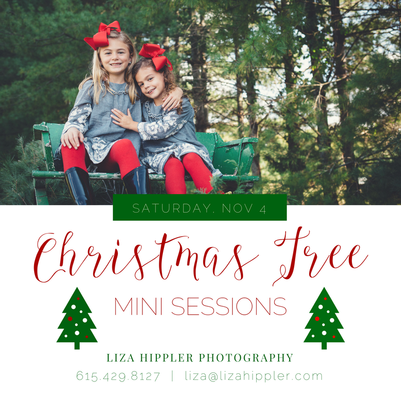 Christmas Tree Farm Sessions -