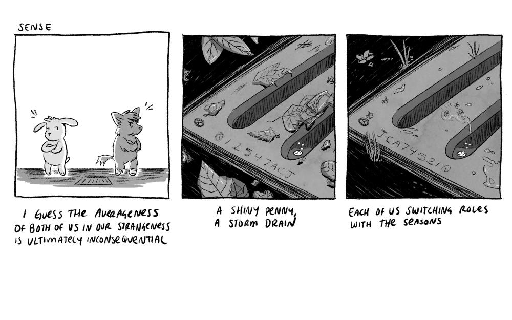 strip1.jpg
