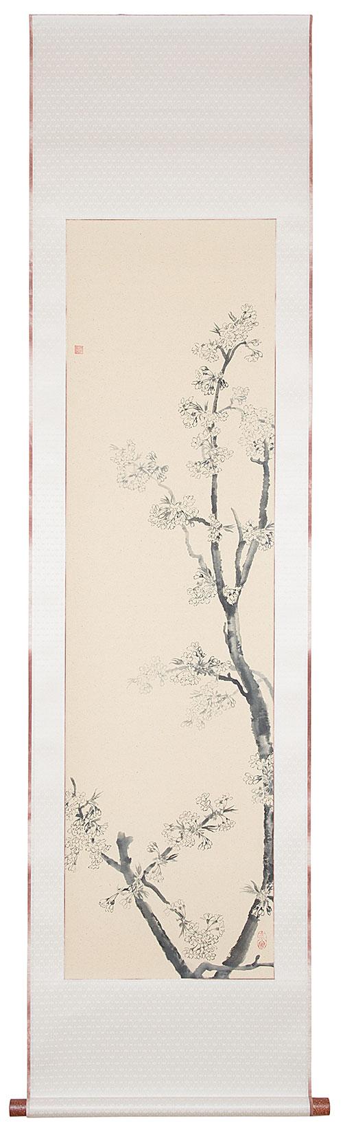 217-Kirschblüten-IMG_8238-Kopie.jpg
