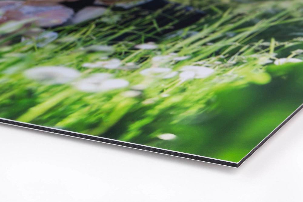 Aluprint - Højkvalitets UV-print direkte på en hvid formstabil Alu Dibond plade (alu komposit), som giver printet et skarpt og semimat udtryk. Ved print på aluplade får du et refleksfrit print, som ikke falmer. Leveres med skjult beslag på bagsiden.