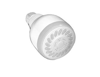 Wall Mounted Showerhead