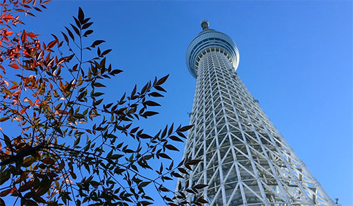 Tokyo 1412 - Winterworld 2014