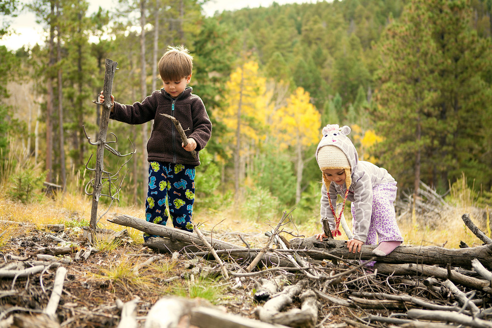 Jugando en el bosque.Travis Swan.CC BY-ND 2.0