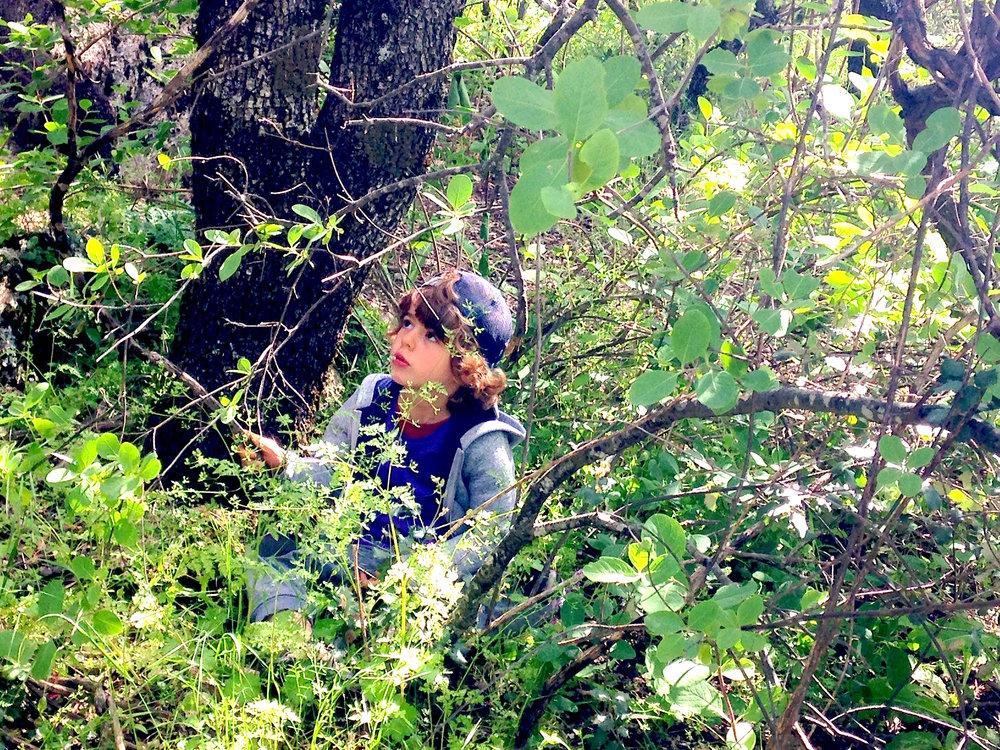 Un niño se esconde entre los matorrales.
