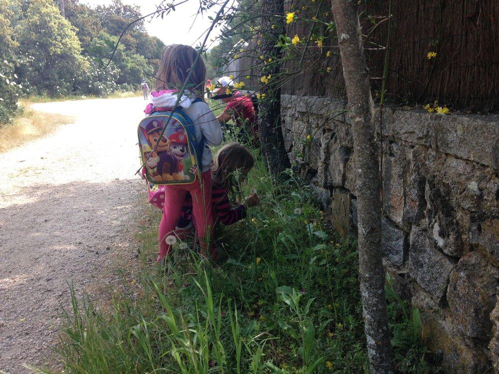 Unas niñas se detienen para recoger plantas al borde del camino.