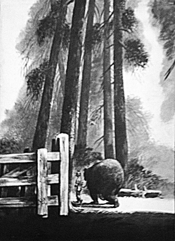 beartrees.jpg