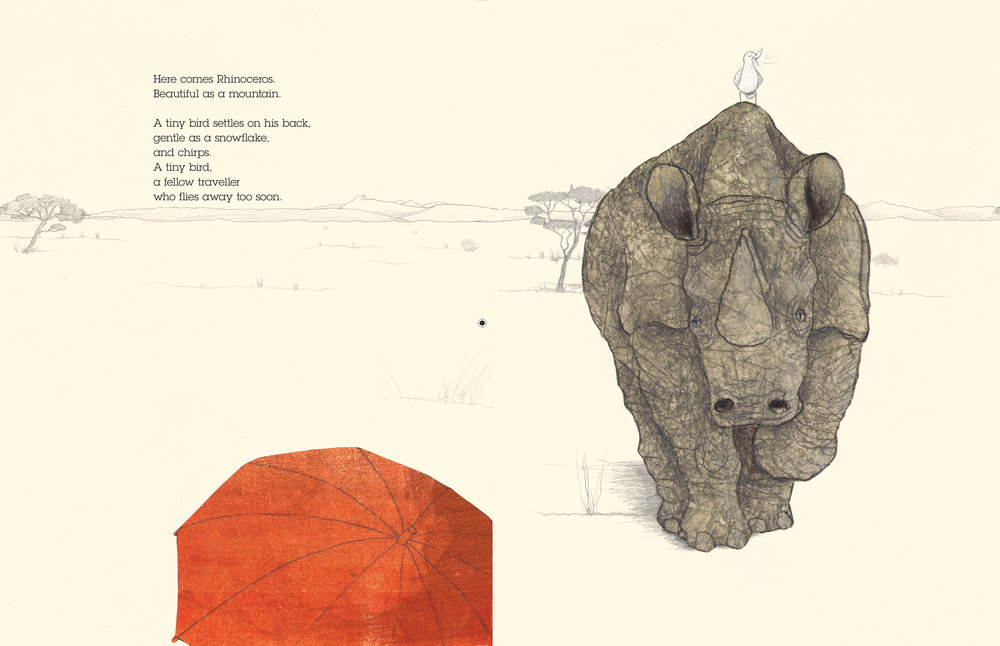 Rhino-6.jpg