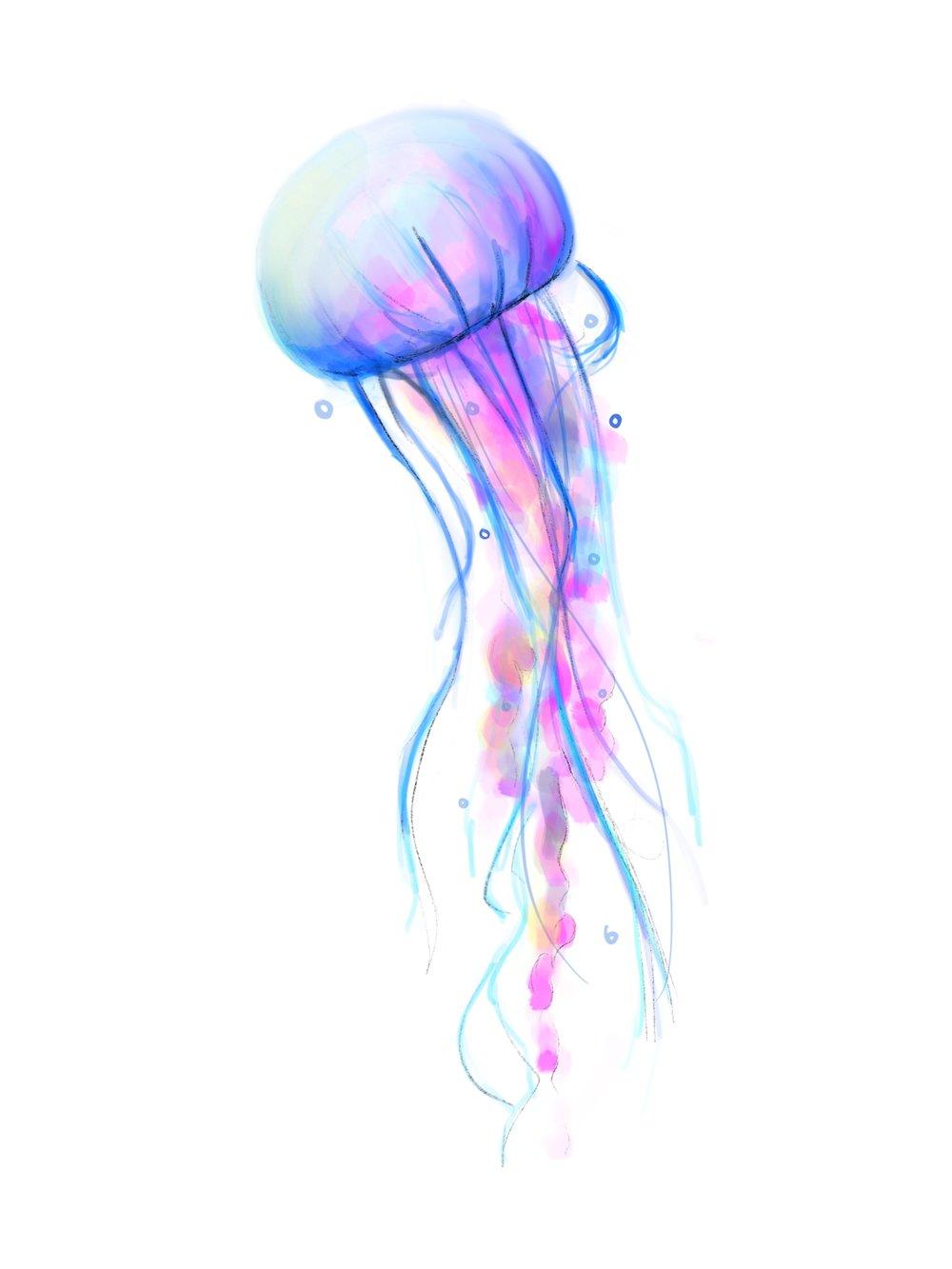 Jellyfish01.jpg