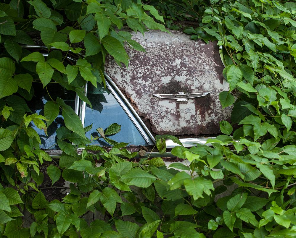 Old Cars-9.jpg