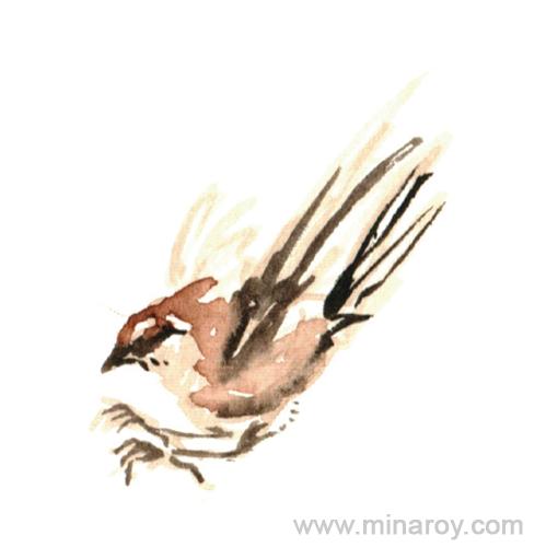MinaRoy_Paintedbird_RGB_001.png