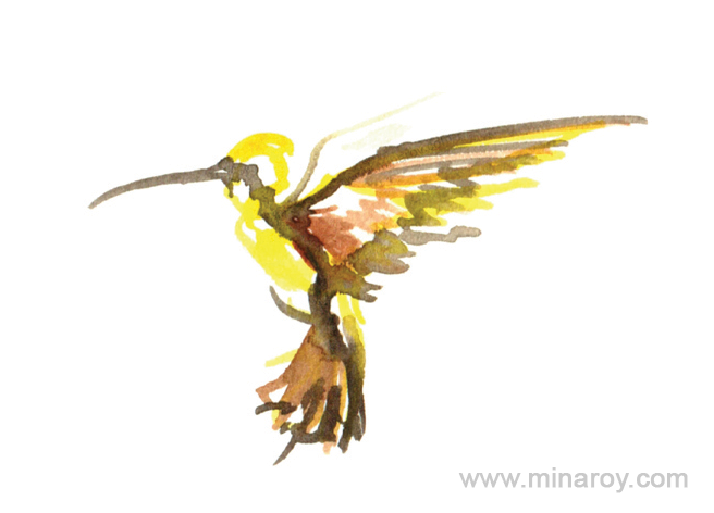 MinaRoy_Paintedbird_RGB_012.png