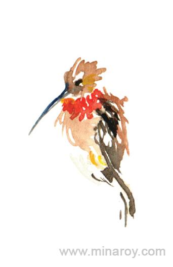 MinaRoy_Paintedbird_RGB_013.png