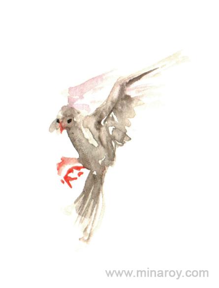 MinaRoy_Paintedbird_RGB_019.png