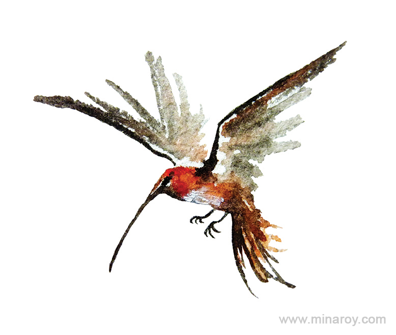 MinaRoy_Paintedbird_RGB_021.png