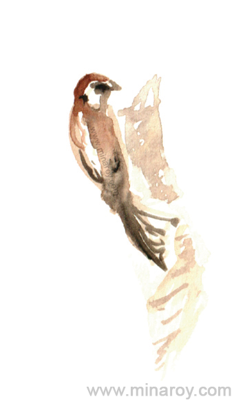 MinaRoy_Paintedbird_RGB_031.png