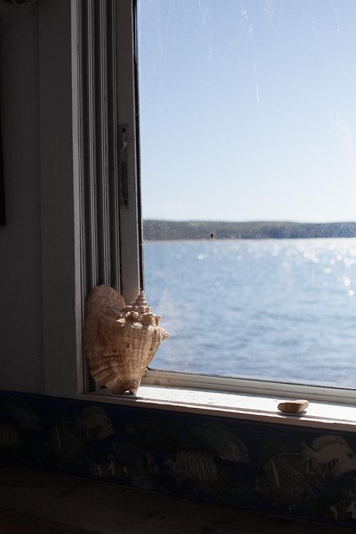 The spider on the window of Duryea's, Montauk, NY.
