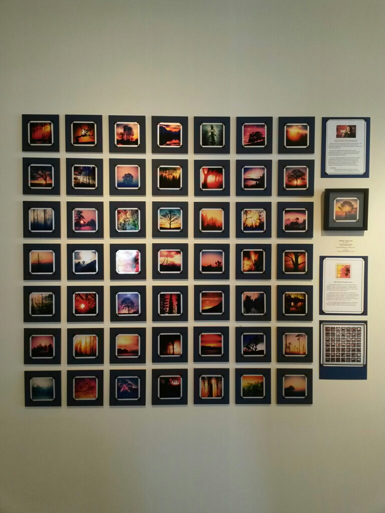 Denise Tarantino's 50|50 Display