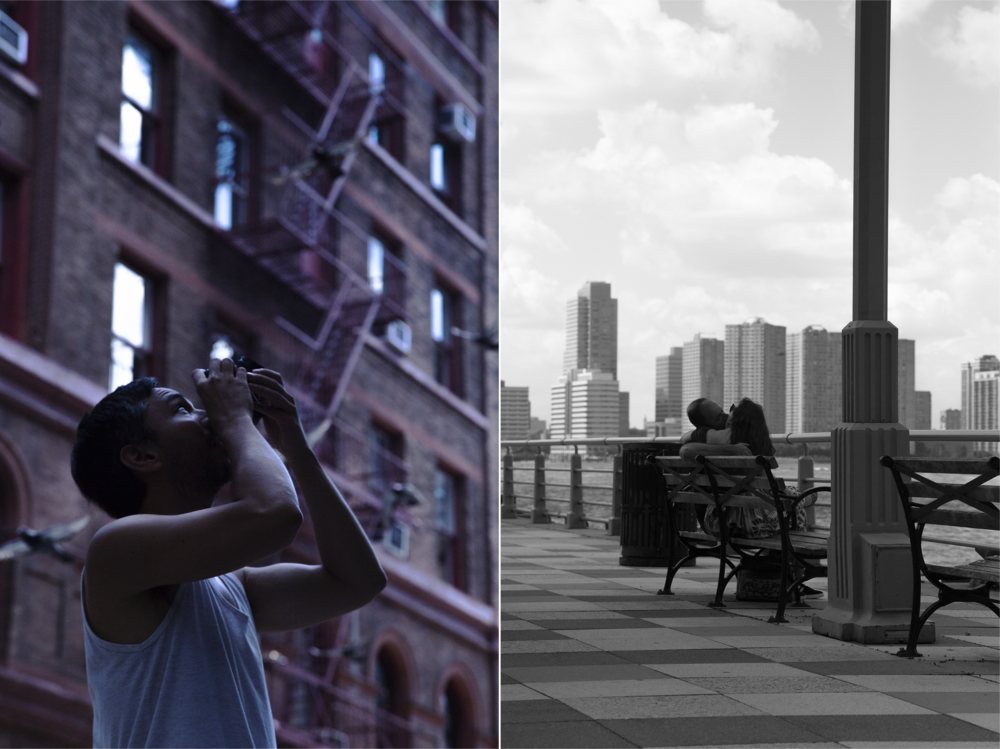 Rose Colored Glasses_Final.png